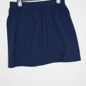 Madewell Blue Zip Back Pleated A-Line Skirt SZ 6